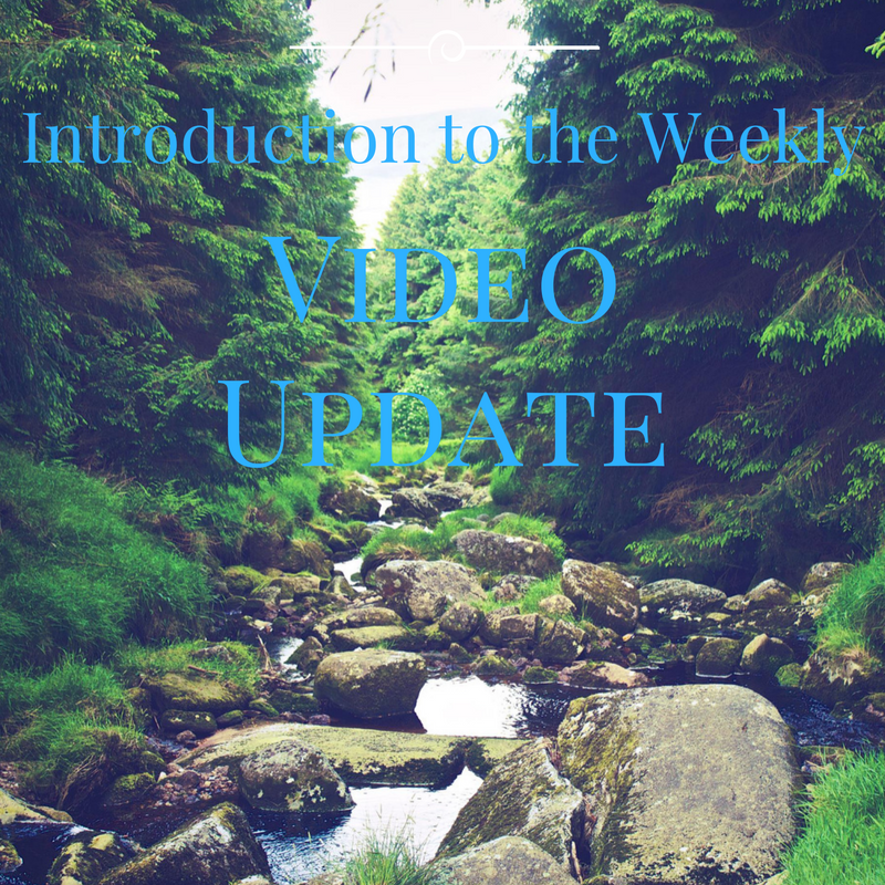 Introduction to the Weekly Update